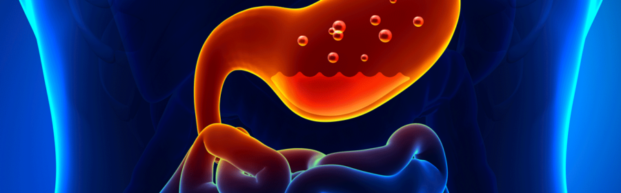 Current Research in Gastroenterology and Hepatology – Kosmos